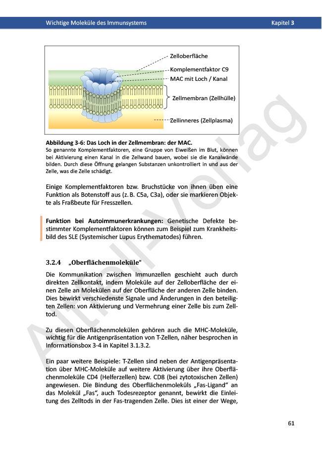 Leseprobe_Buch_20181004_WZaktuell-18